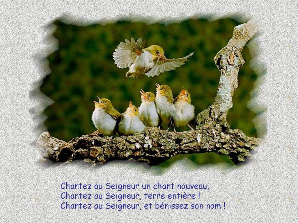 """Chantez au Seigneur un chant nouveau !"""" - ppt télécharger"""