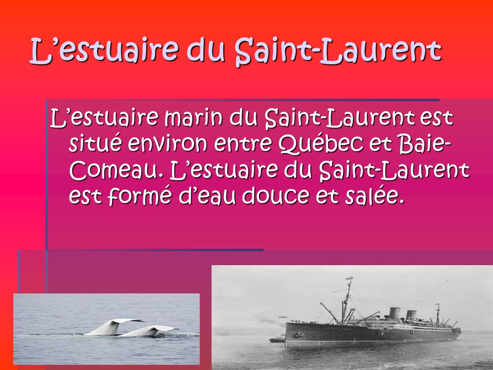 L'estuaire du Saint-Laurent