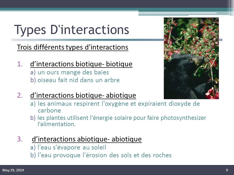 Types D interactions Trois différents types d interactions