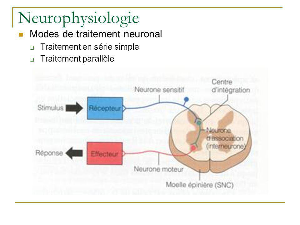 Neurophysiologie Modes de traitement neuronal