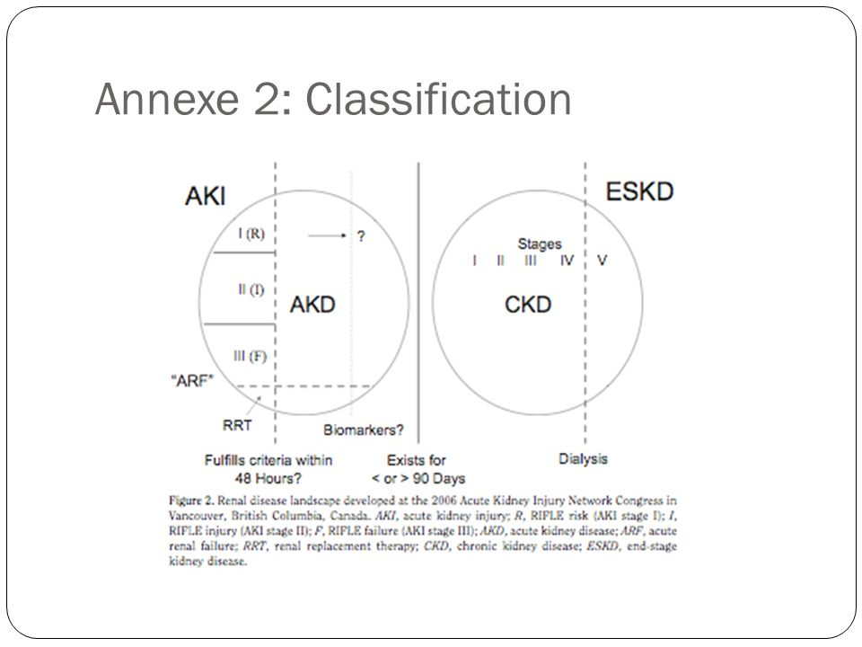 Annexe 2: Classification