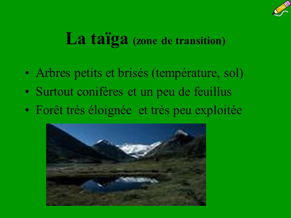 La taïga (zone de transition)