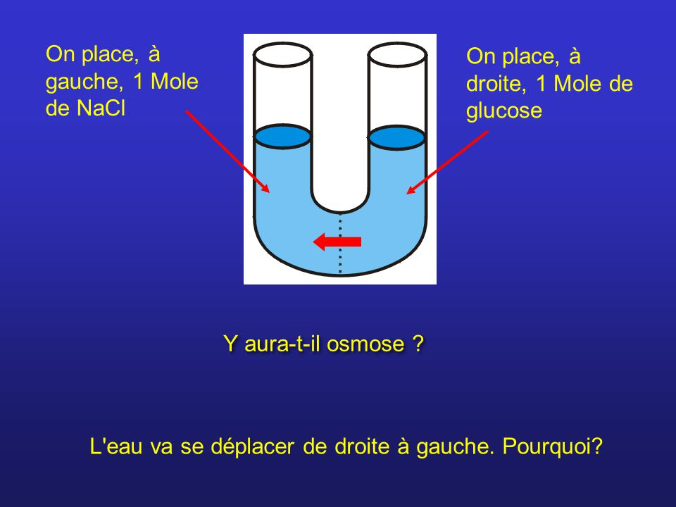 On place, à gauche, 1 Mole de NaCl