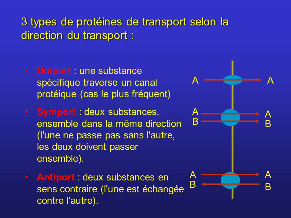 3 types de protéines de transport selon la direction du transport :