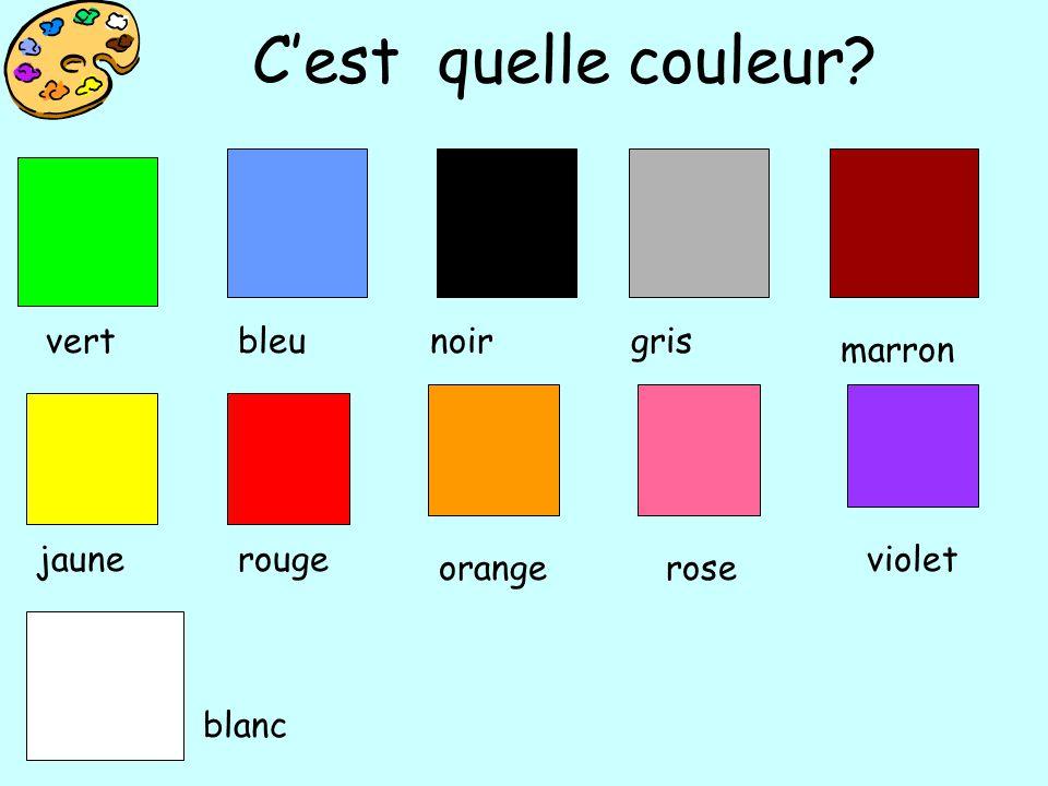 Starter:c'est quelle couleur, DEVINE/GUESS!   ppt video online