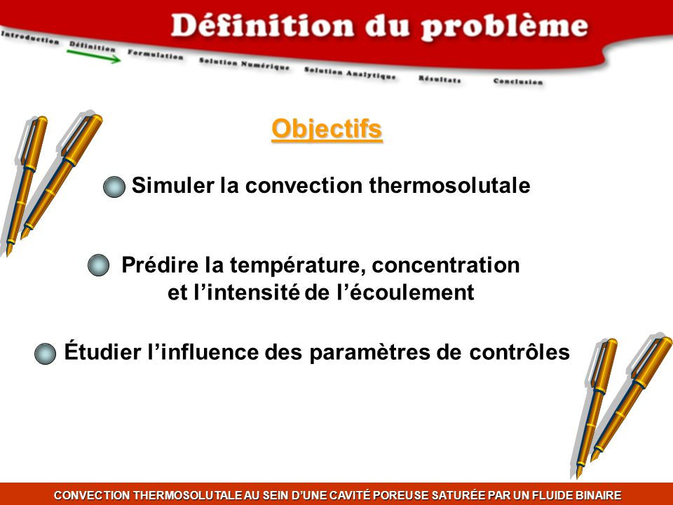 Objectifs Simuler la convection thermosolutale
