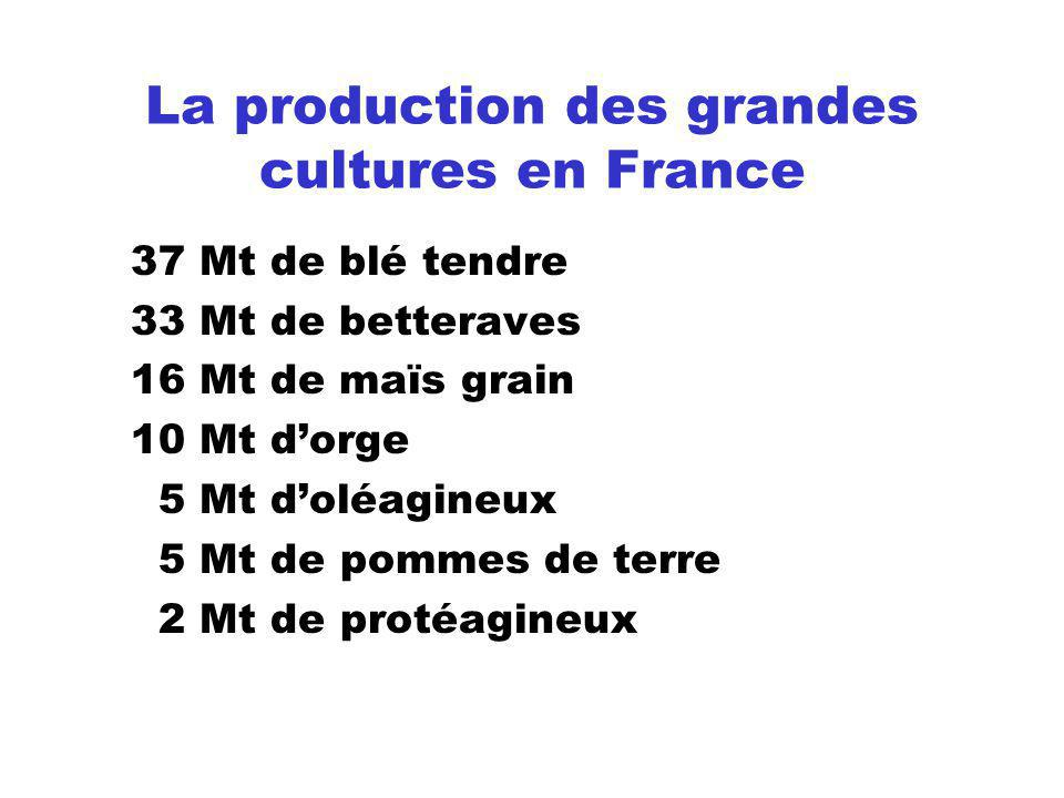La production des grandes cultures en France