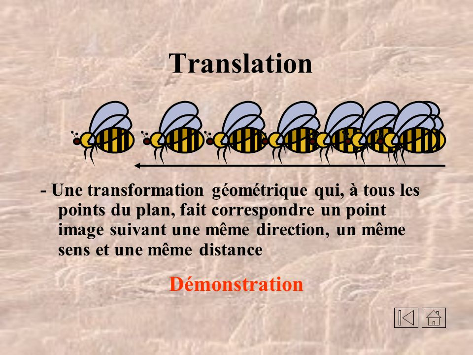 Translation Démonstration