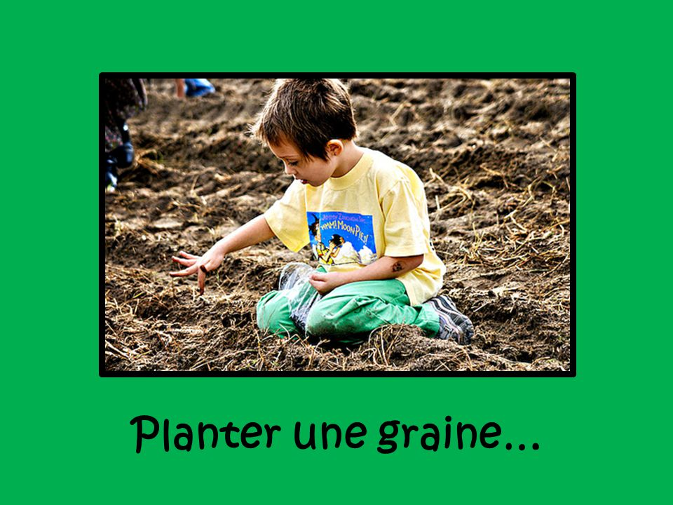 Planter une graine…