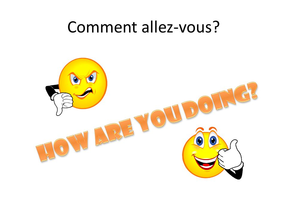 Comment allez-vous How are you doing
