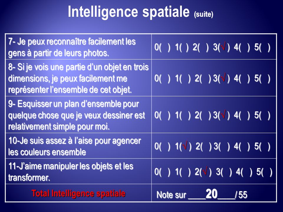 Intelligence spatiale (suite) Total Intelligence spatiale