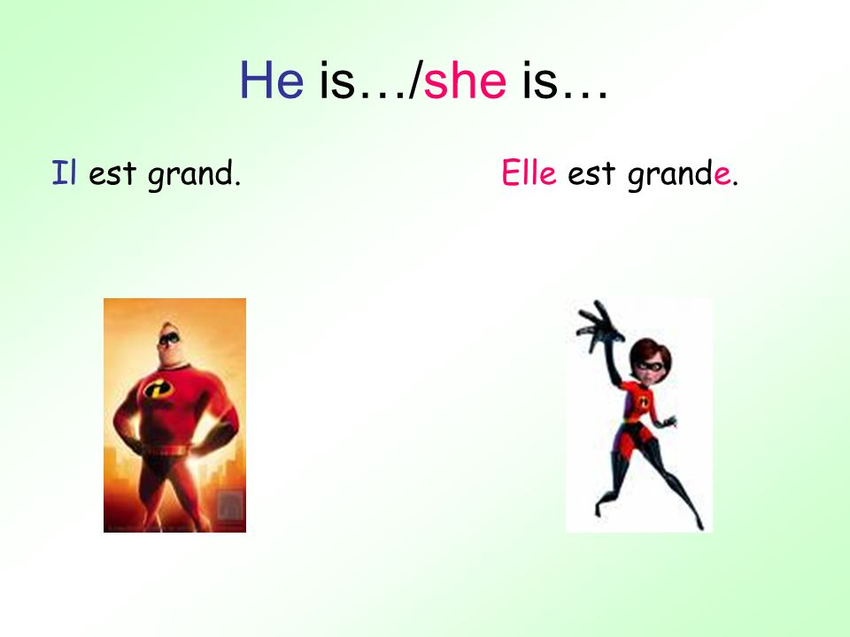 He is…/she is… Il est grand. Elle est grande.