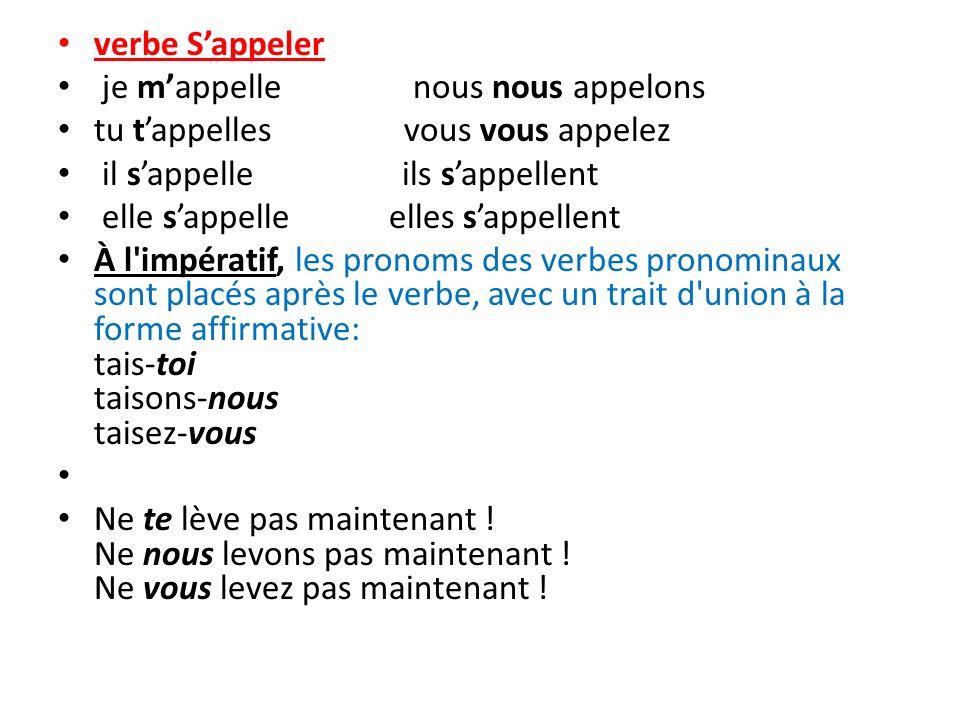 Lundi 1 Avril 2013 L Imperatif Et Les Verbes Pronominaux Ppt Telecharger