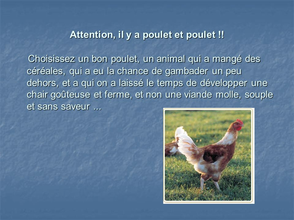 Attention, il y a poulet et poulet !!