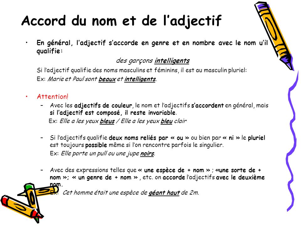 Accord du nom et de l'adjectif