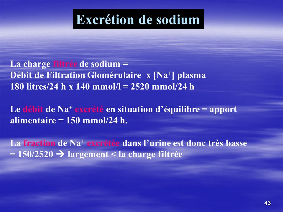 Excrétion de sodium La charge filtrée de sodium =