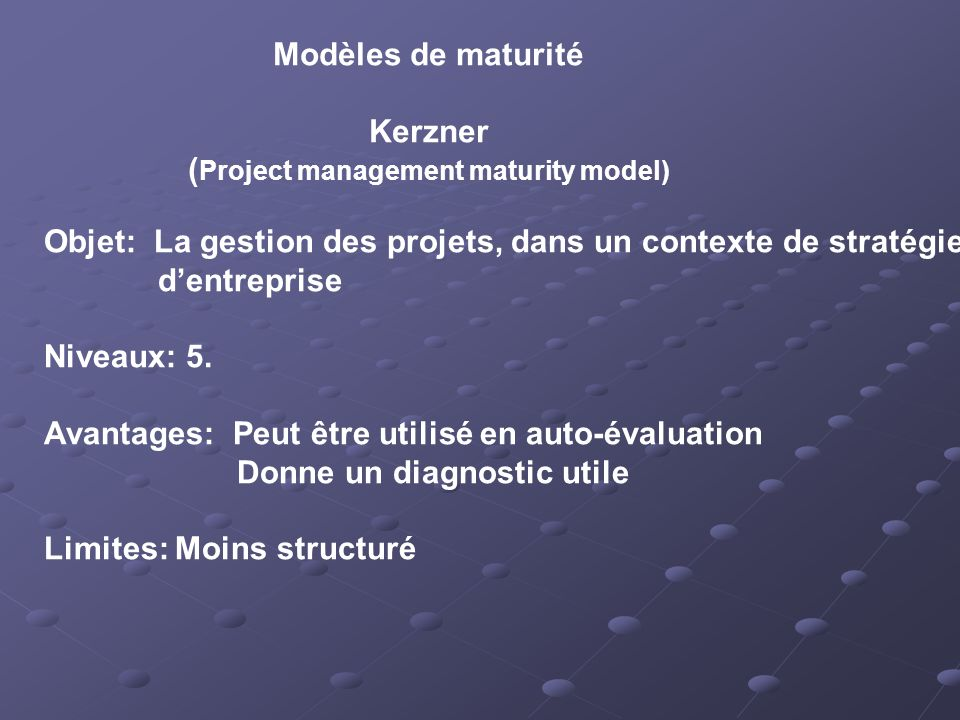 (Project management maturity model)
