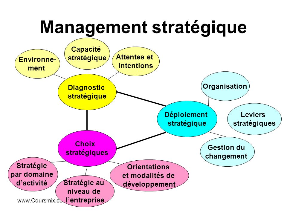 Management Strategique Et Systeme D Information 1 Ppt Video Online