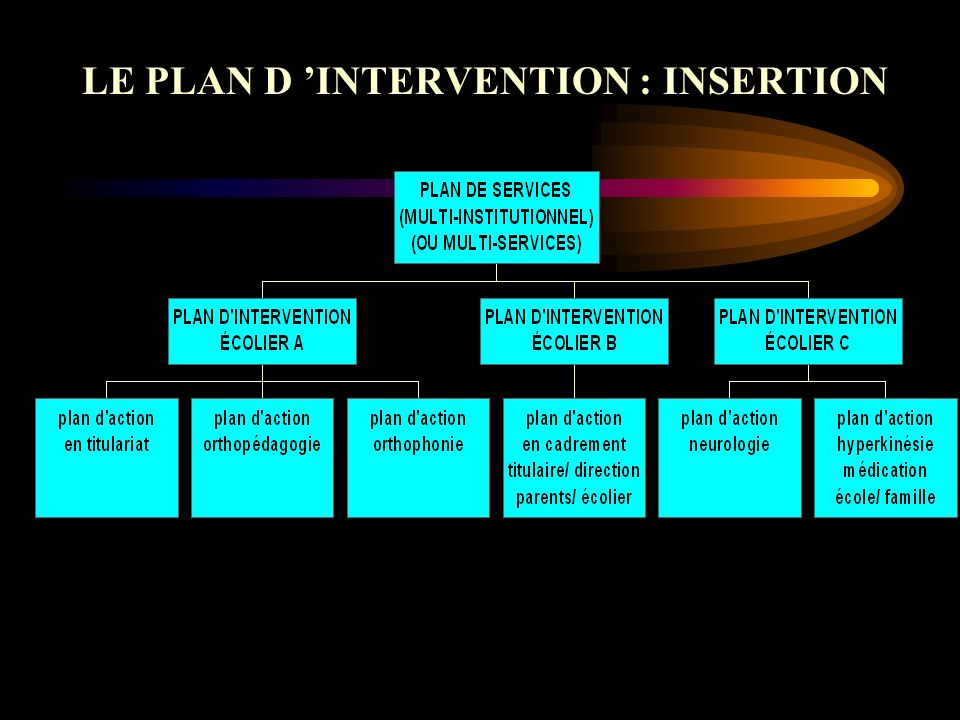 LE PLAN D 'INTERVENTION : INSERTION
