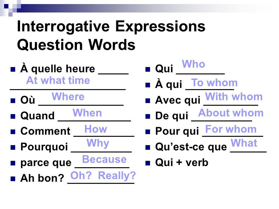 Interrogative Expressions Question Words