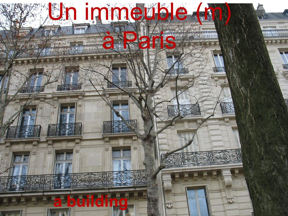 Un immeuble (m) à Paris a building