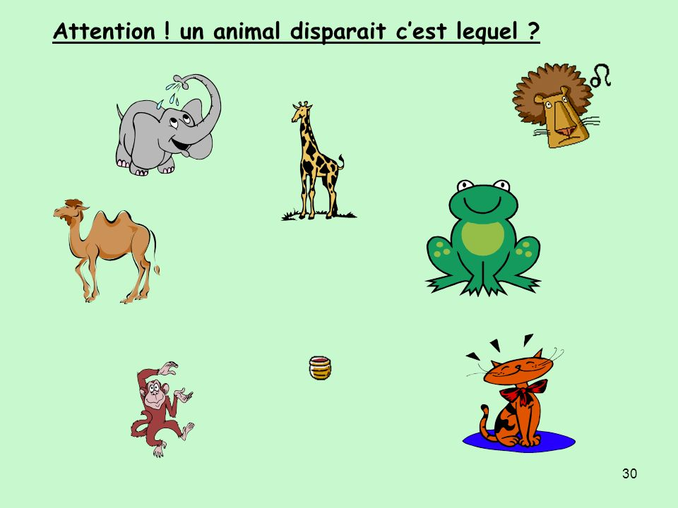 Attention ! un animal disparait c'est lequel