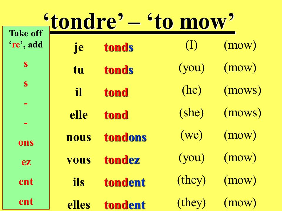 'tondre' – 'to mow' (I) (you) (he) (she) (we) (they) (mow) (mows) je