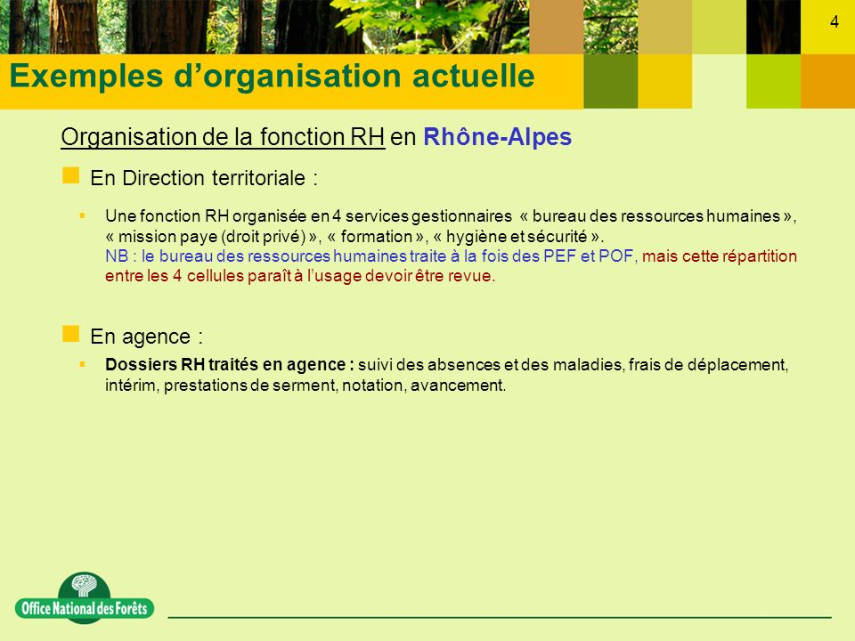 Exemples d'organisation actuelle