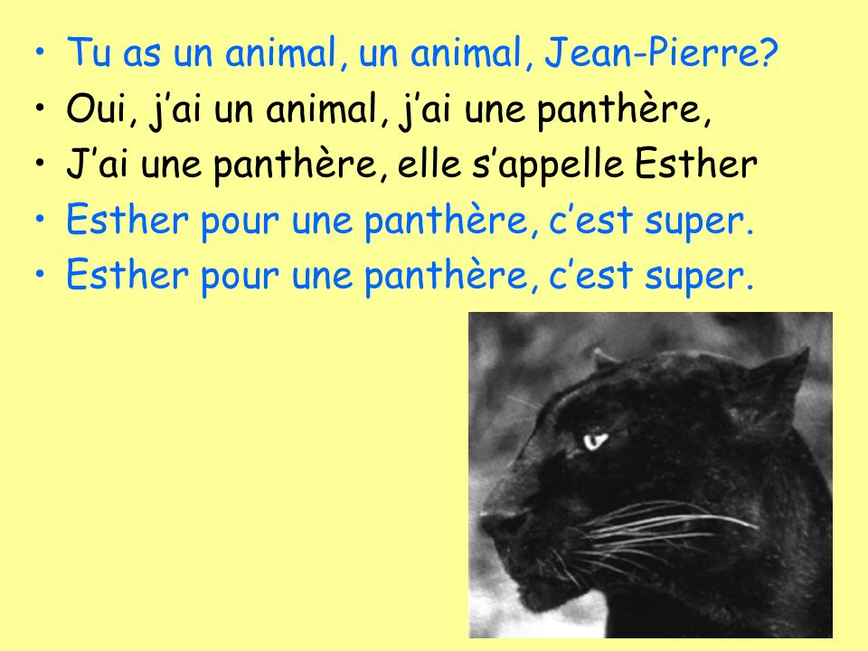 Tu as un animal, un animal, Jean-Pierre