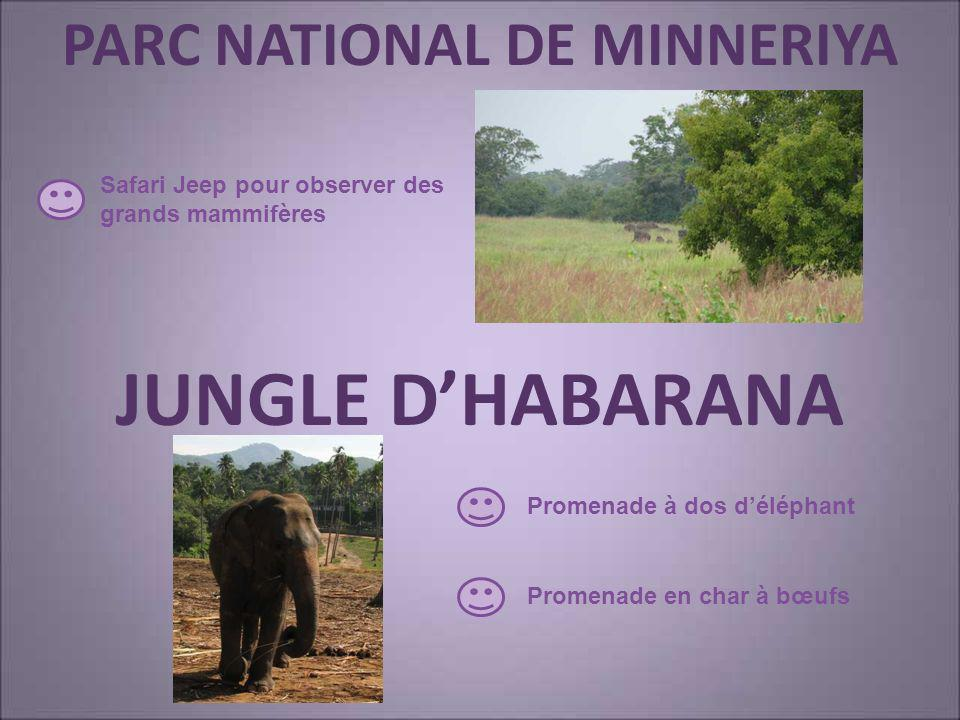 PARC NATIONAL DE MINNERIYA