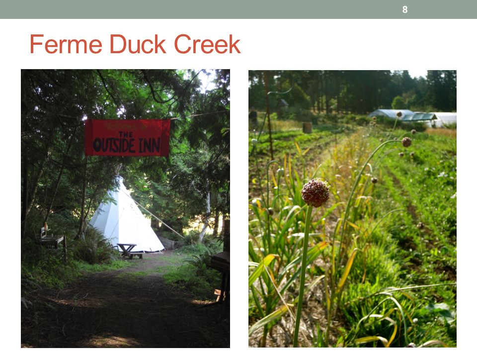 Ferme Duck Creek