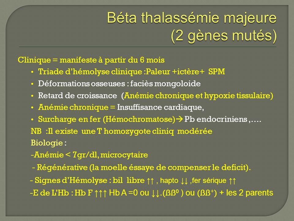 Drépanocytose Thalassémies Dr Karim Boudjedir (Laboratoire Eurocord ...