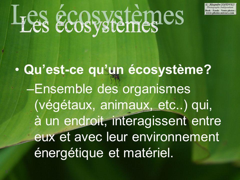 La Durabilité Des écosystèmes Ppt Video Online Télécharger