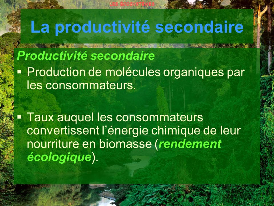 La productivité secondaire