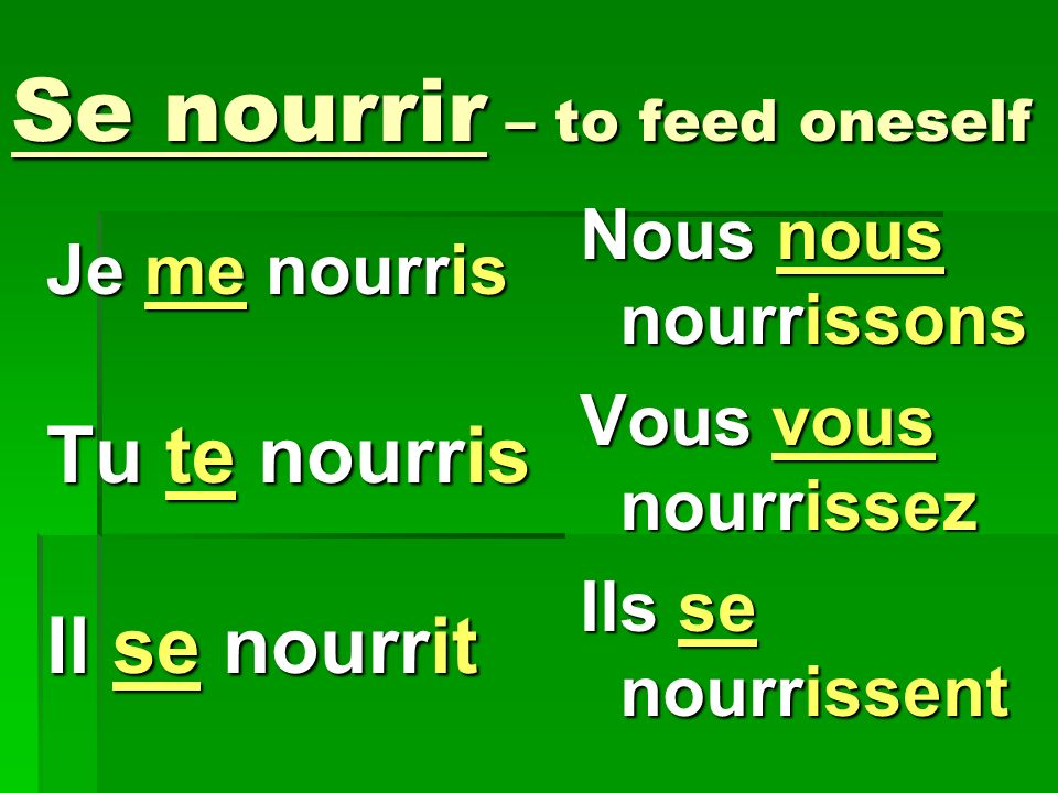 Se nourrir – to feed oneself