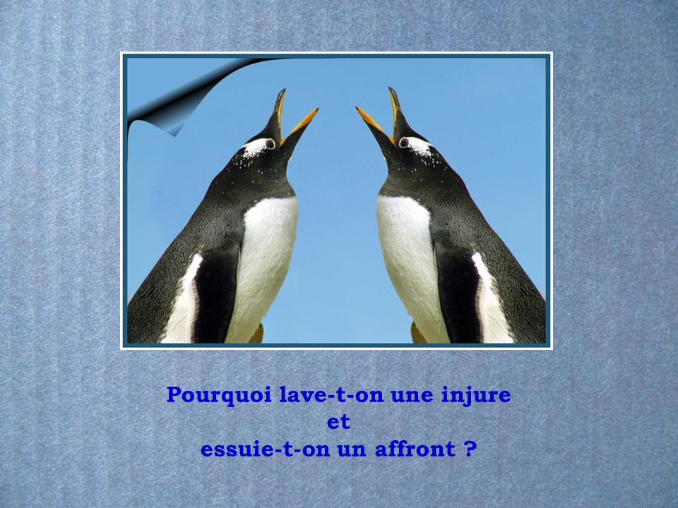 Pourquoi lave-t-on une injure essuie-t-on un affront