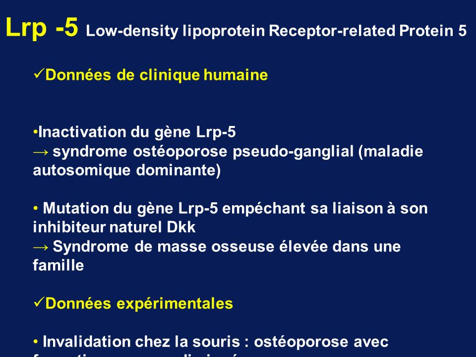 Lrp -5 Low-density lipoprotein Receptor-related Protein 5
