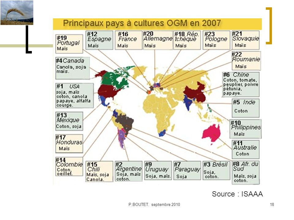 Source : ISAAA P.BOUTET. septembre 2010