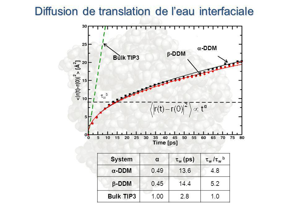 Diffusion de translation de l'eau interfaciale