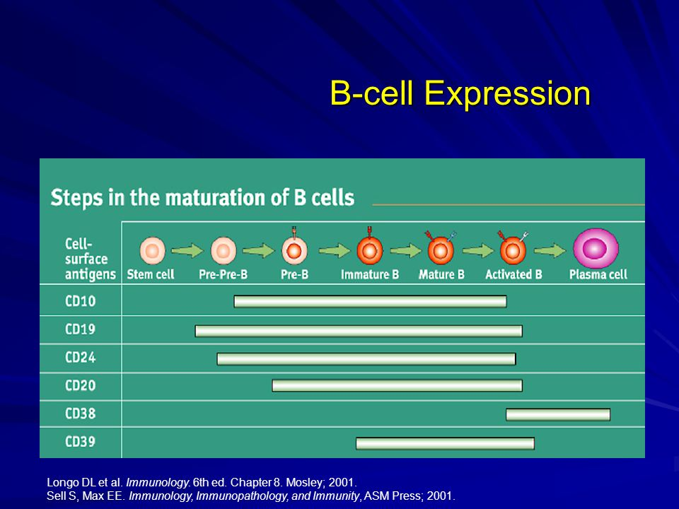 B-cell Expression