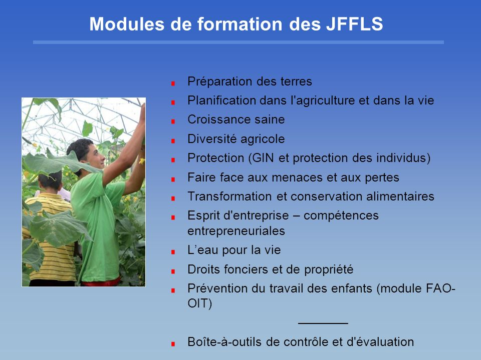 Modules de formation des JFFLS