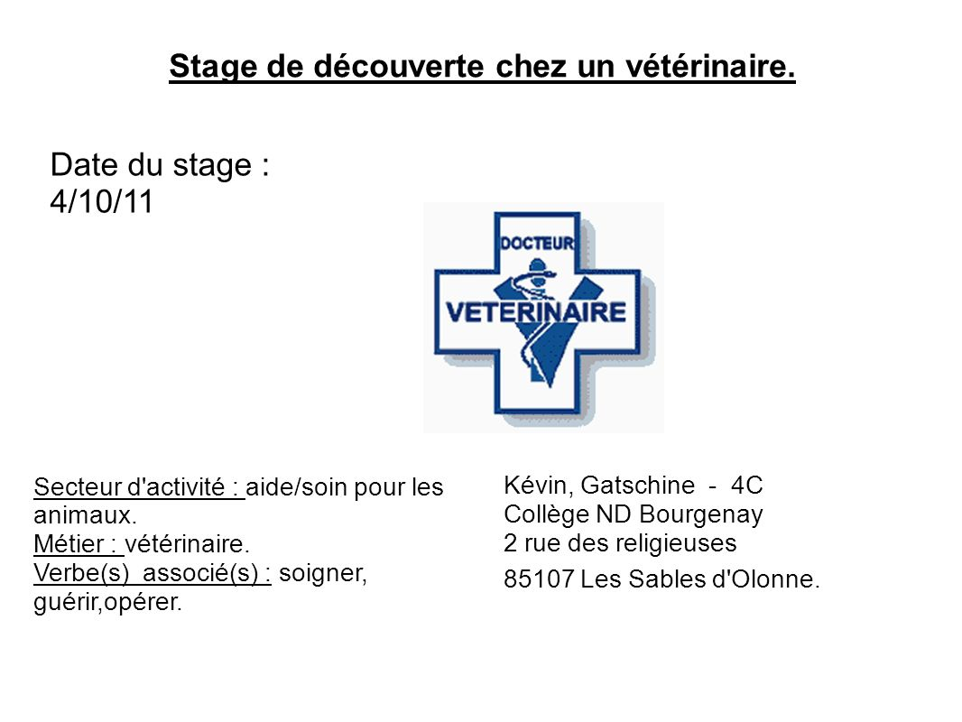 Stage De Decouverte Chez Un Veterinaire Ppt Video Online Telecharger