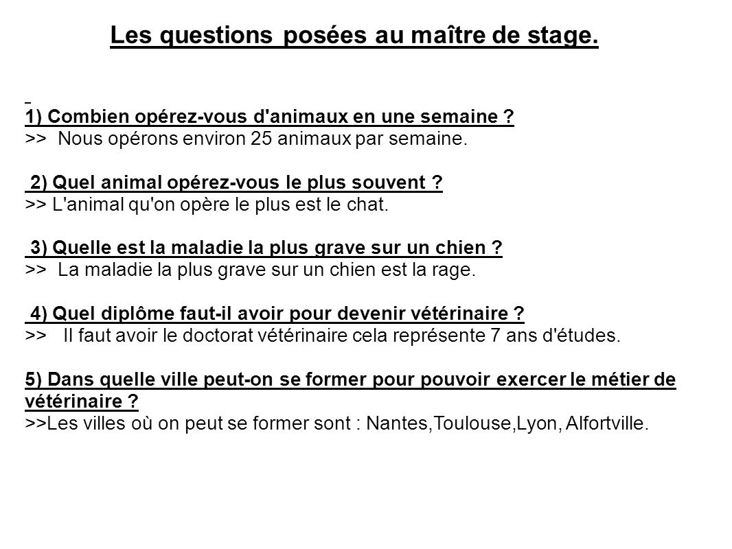 question a poser lors d un stage de 3eme