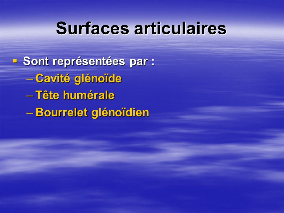 Surfaces articulaires