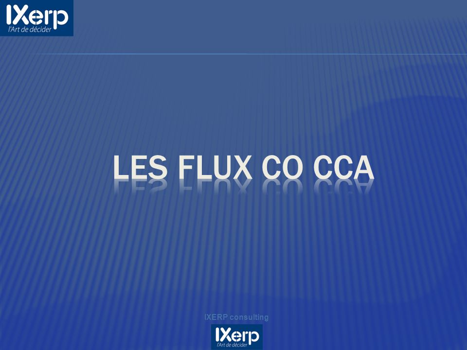Les flux CO CCA IXERP consulting