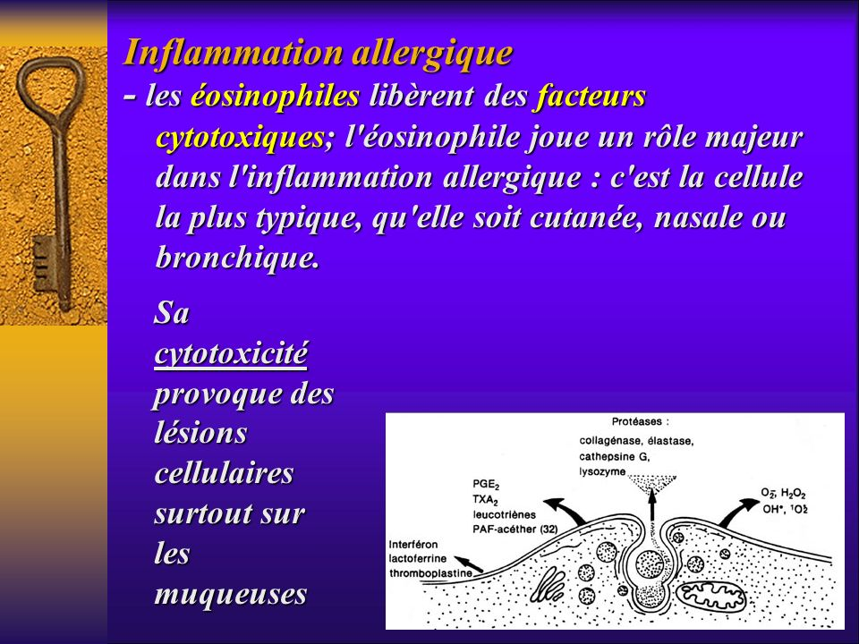 Inflammation allergique