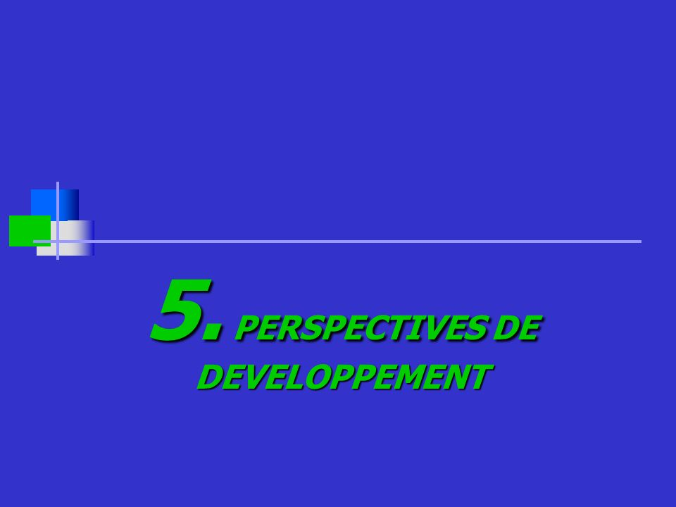 5. PERSPECTIVES DE DEVELOPPEMENT
