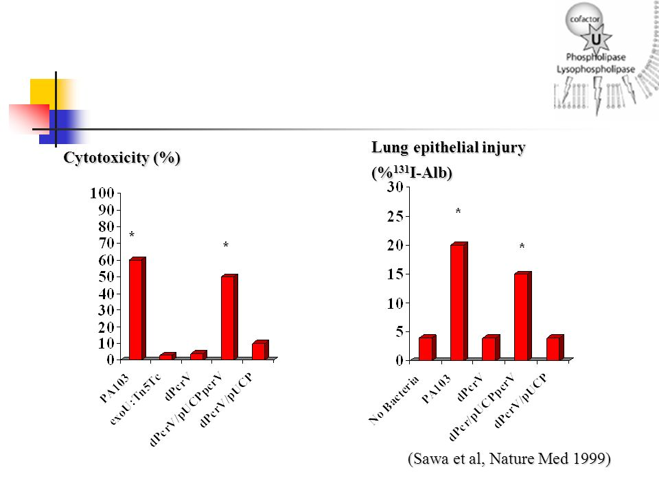 Lung epithelial injury (%131I-Alb) Cytotoxicity (%)