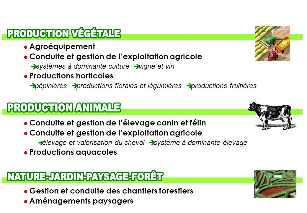 AGRICULTURE-ENVIRONNEMENT- AGROALIMENTAIRE