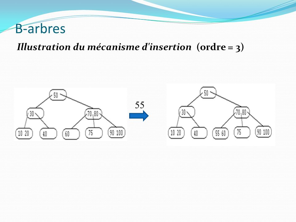 B-arbres Illustration du mécanisme d insertion (ordre = 3) 55